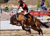 Bronc Rider and Girl